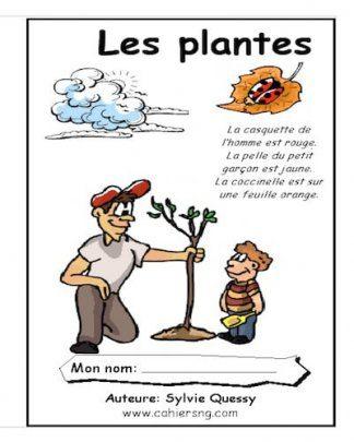 3_plantes_ptc