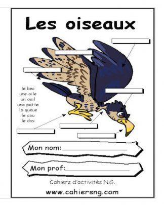 L3.oiseaux_PTC