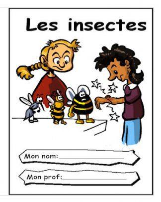 L6.Insectes_PTC